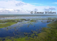Aerial View of Magela Floodplains