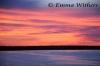 Essington Sunrise