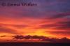 Warm Tones of Sunset