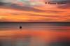 Sureal Sunset